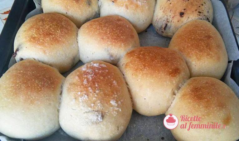Brioche con bimby senza lattosio - panini-lievito-madre-766x452