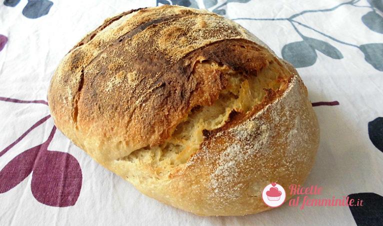 Pane di altamura con lievito madre - pane-di-altamura-con-lievito-madre-2-766x452