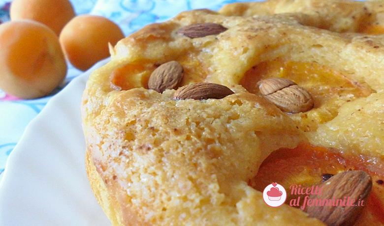 Torta di albicocche senza lattosio con bimby 4