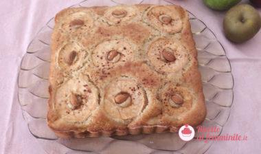 Torta di mele renette con bimby
