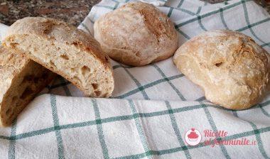Pane con impasto veloce con lievito madre